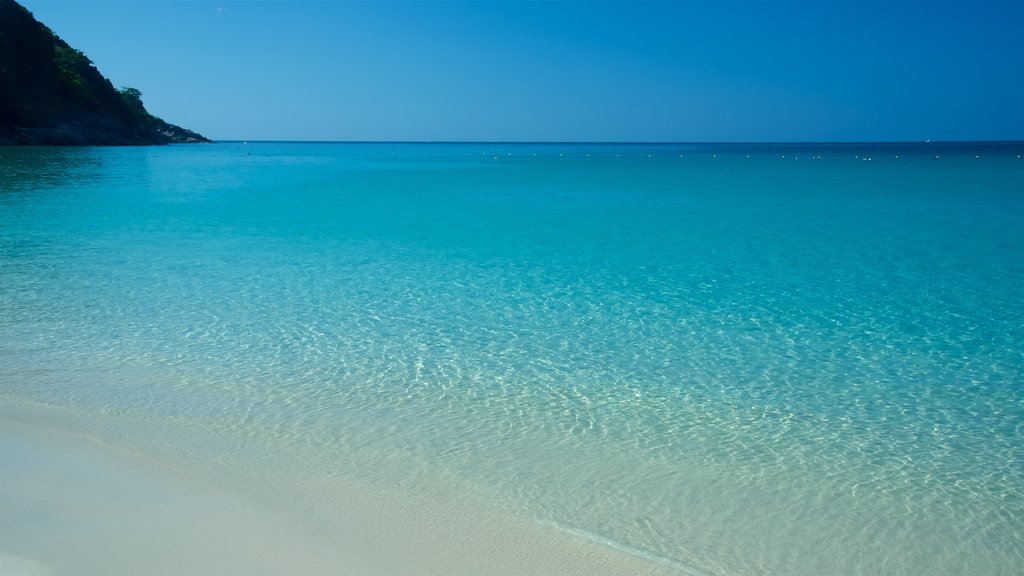 Freedom Beach featuring general coastal views, tropical scenes and a sandy beach