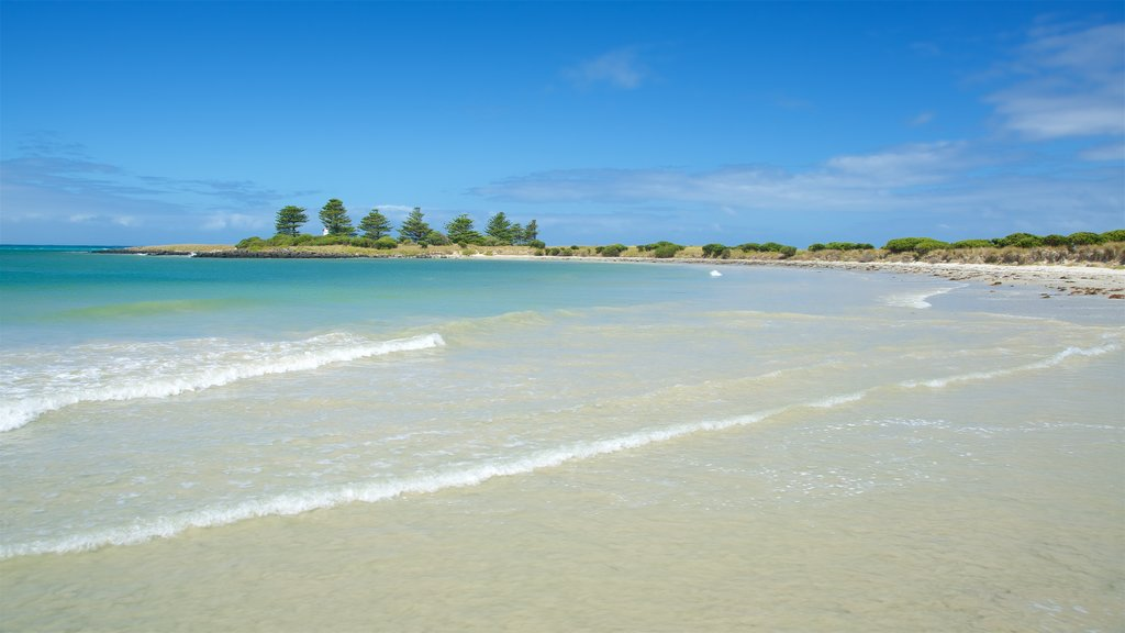 Griffiths Island Lighthouse ofreciendo una bahía o puerto, olas y una playa de arena