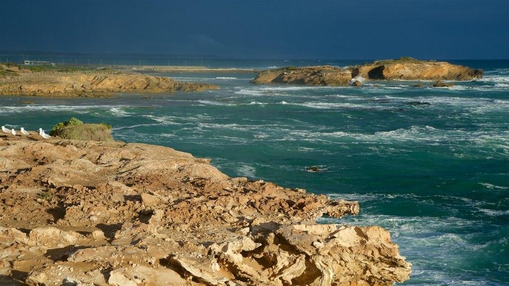 Warrnambool que incluye costa rocosa, una bahía o puerto y surf