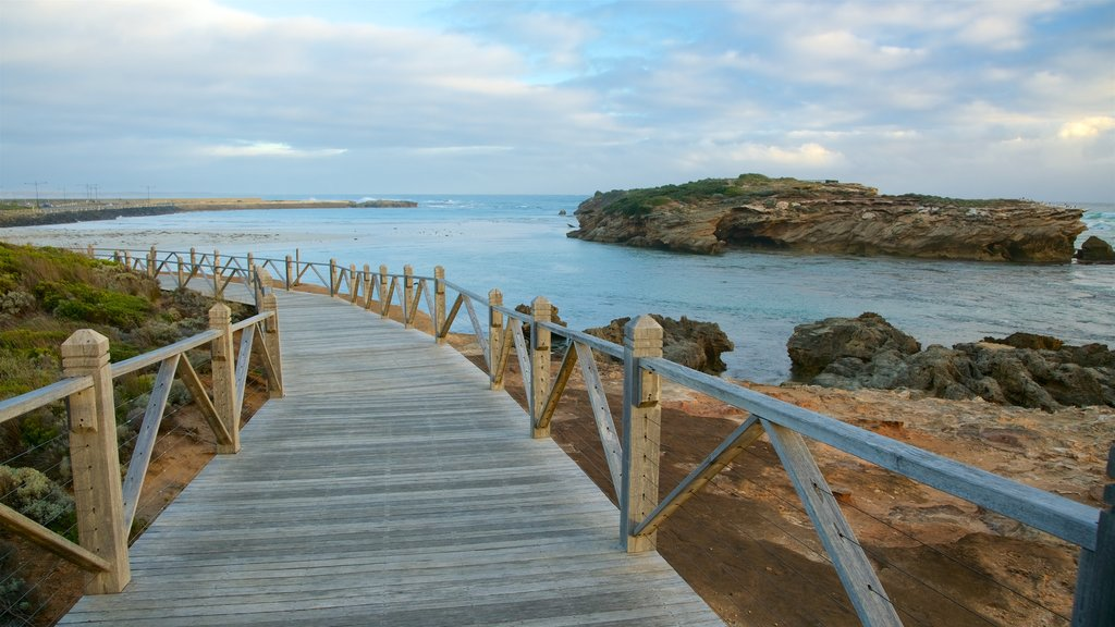 Warrnambool which includes rugged coastline and a bay or harbor