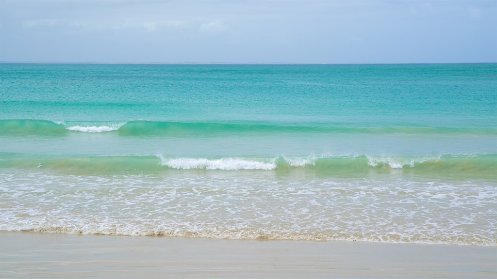 Port Fairy showing surf