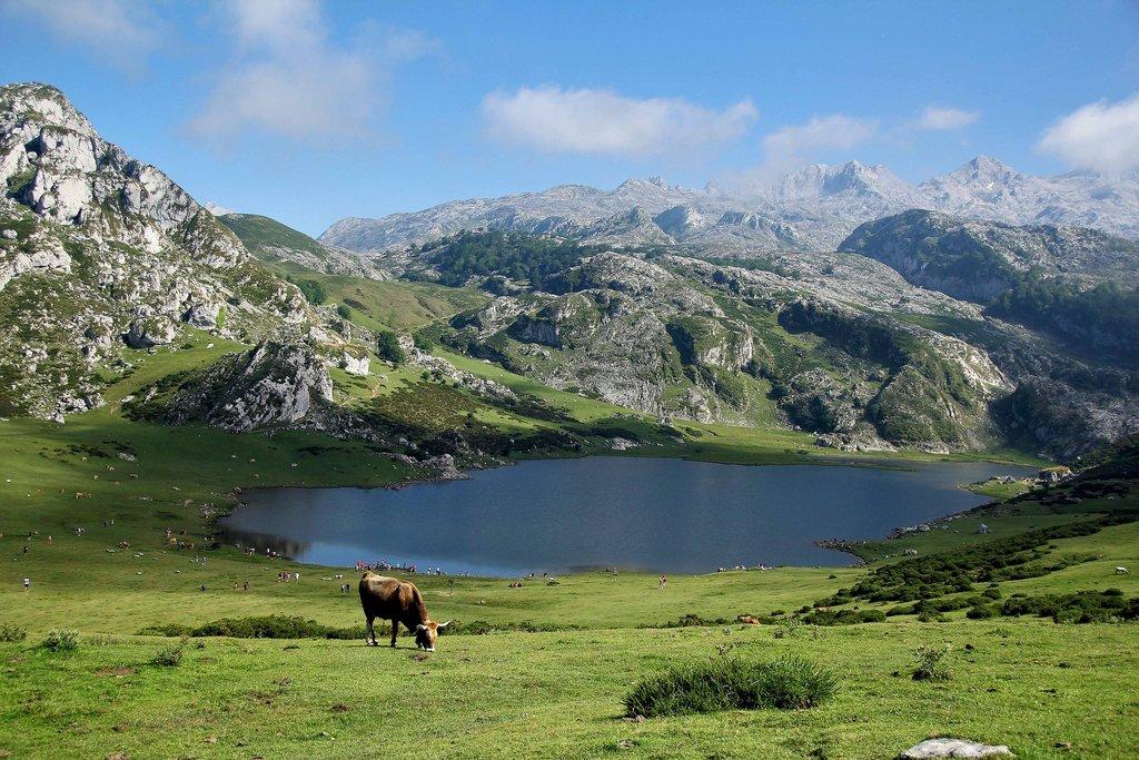 Covadonga.jpg?1561065727