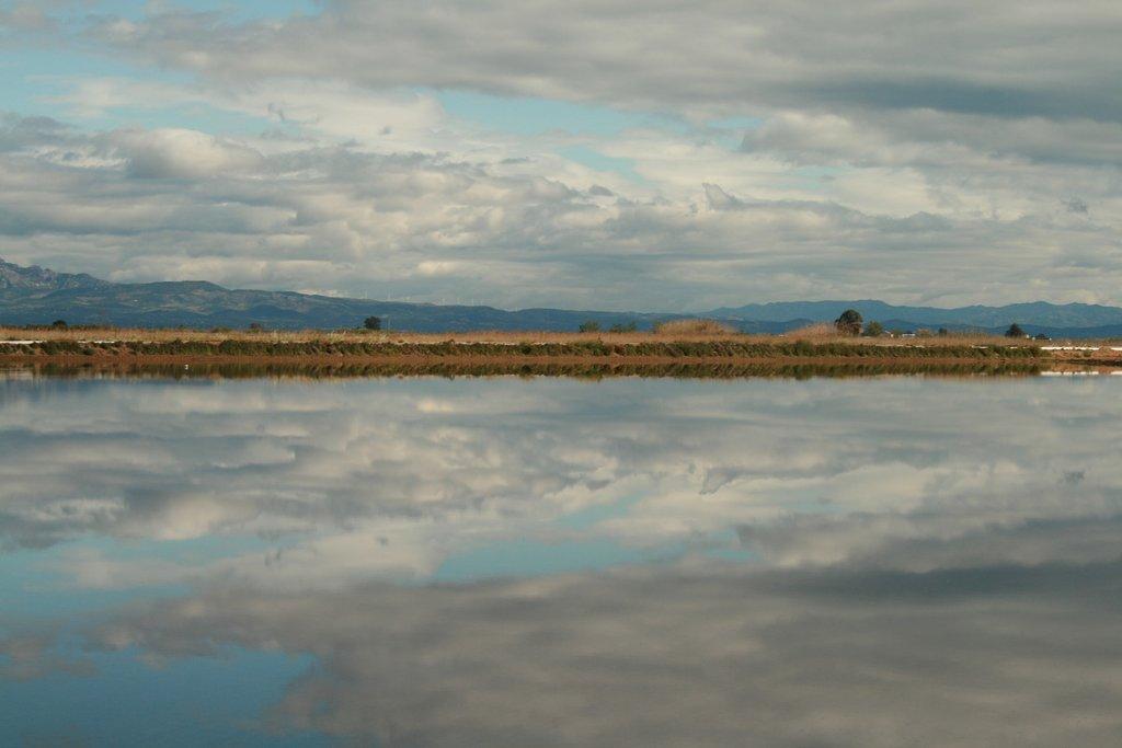 delta_del_Ebro.jpg?1561066174
