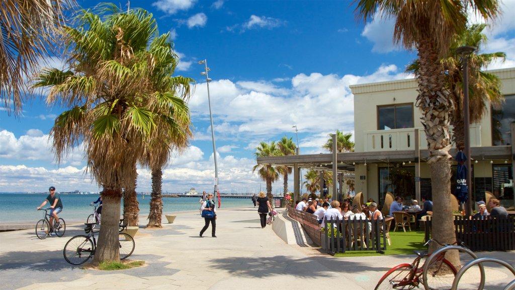 St Kilda featuring general coastal views, a coastal town and tropical scenes