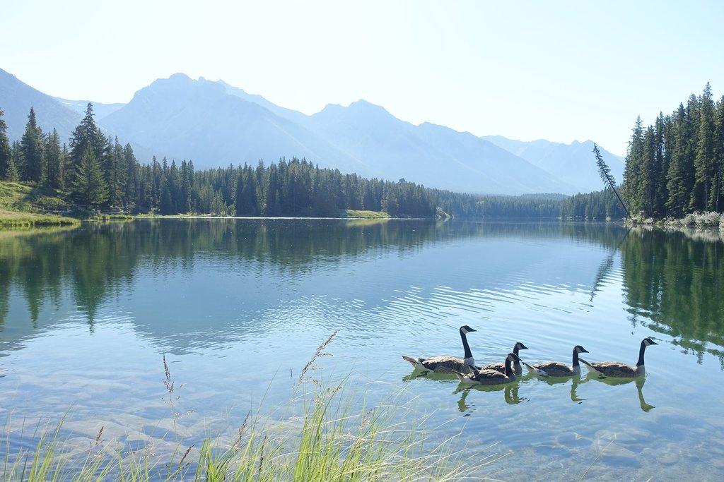 Canada_lac.jpg?1577724829