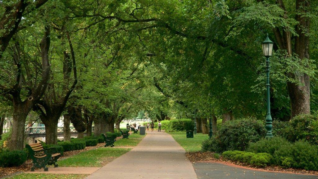 Rosalind Park featuring a garden