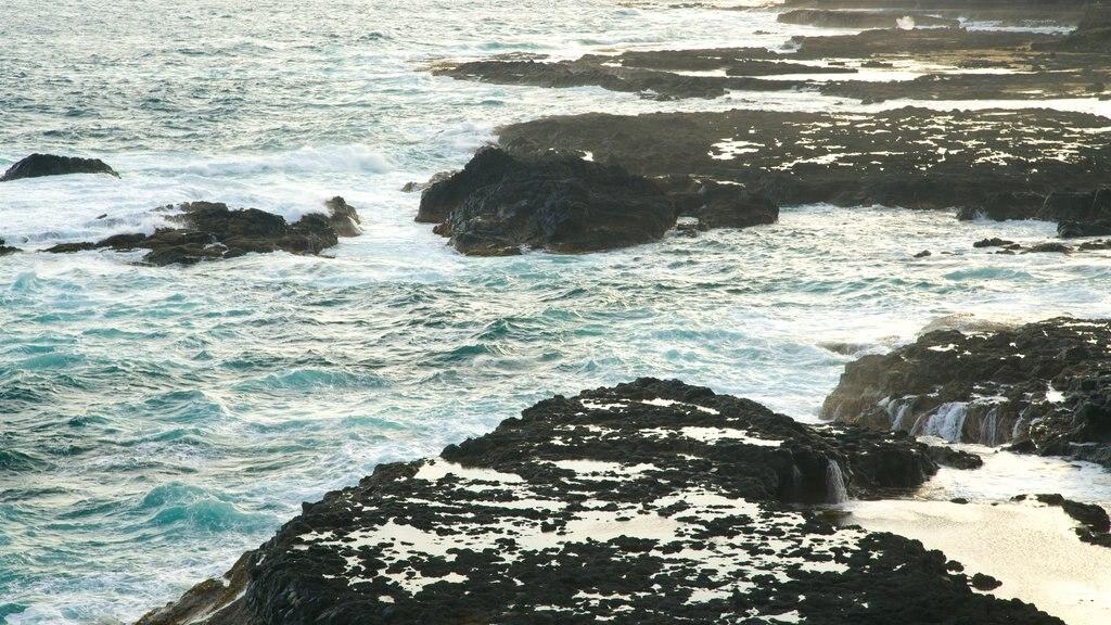 Phillip Island featuring rocky coastline