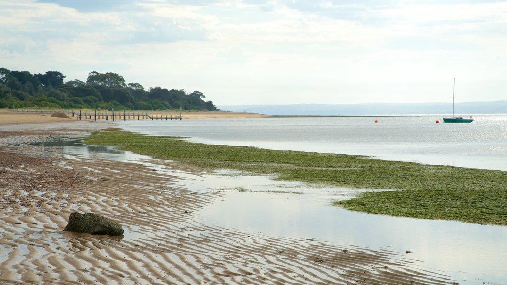Cowes Beach which includes general coastal views and a sandy beach