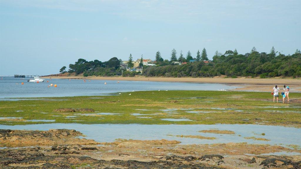 Cowes featuring a beach
