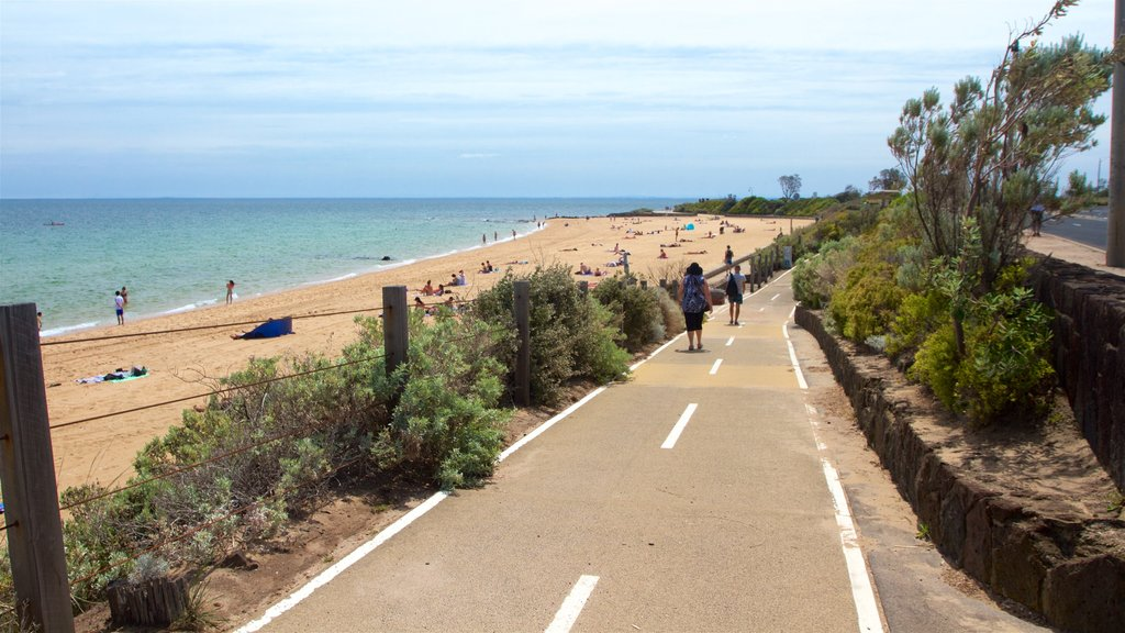 Brighton Beach showing hiking or walking and a beach