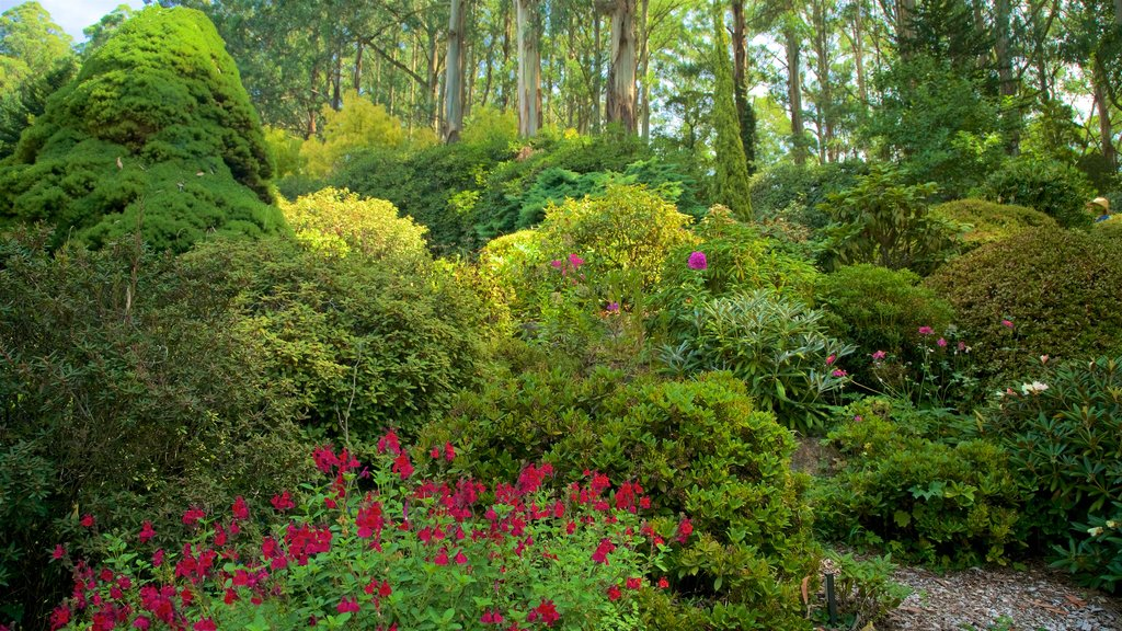 National Rhododendron Gardens which includes a park