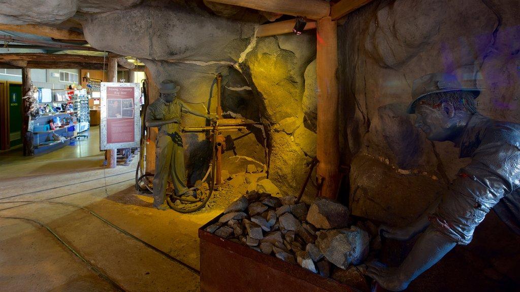 Central Deborah Gold Mine which includes interior views