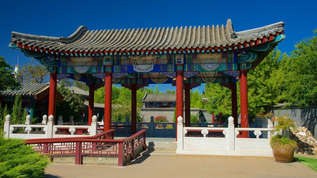 Golden Dragon Museum showing heritage elements