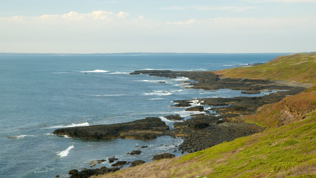 Phillip Island featuring a bay or harbor and rocky coastline