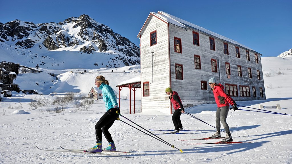 Talkeetna showing cross country skiing, snow and mountains