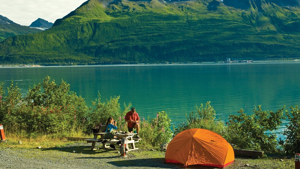 Valdez which includes a bay or harbor, tranquil scenes and mountains