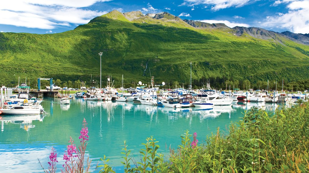 Valdez which includes mountains, a marina and boating