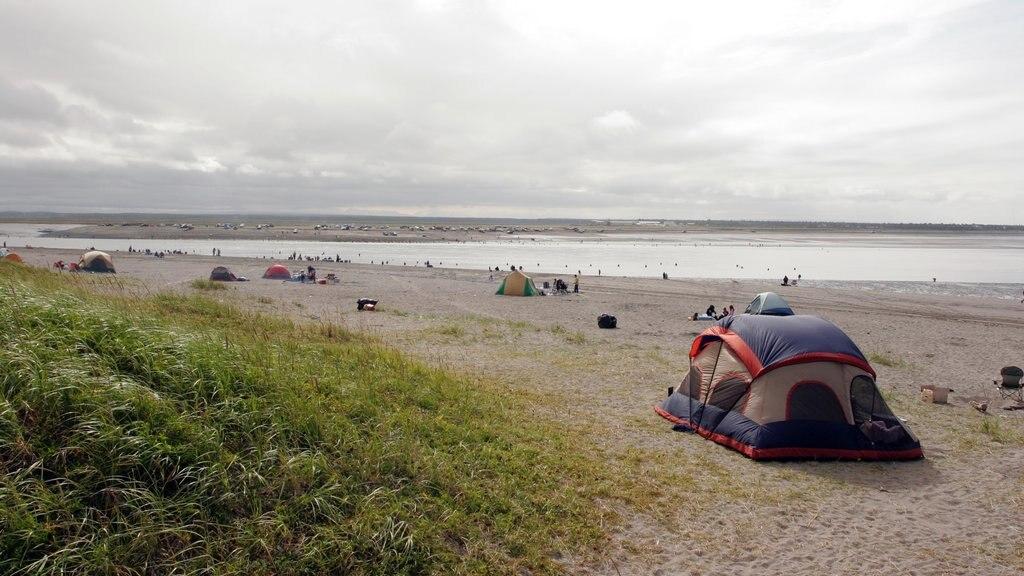 Kenai que incluye una playa de arena, campamento y una bahía o puerto