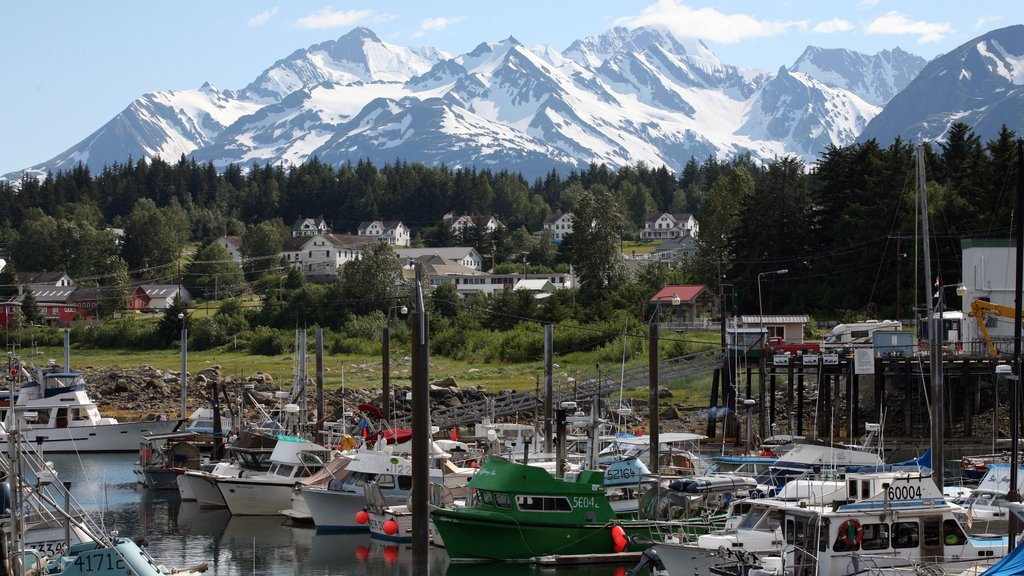 Haines featuring a coastal town, mountains and a marina