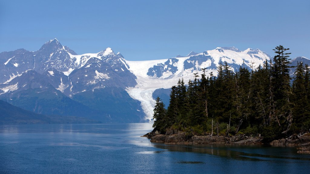 South Central Alaska featuring mountains, forests and a bay or harbor