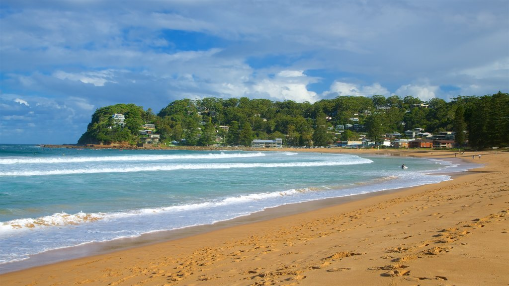 Avoca Beach which includes a coastal town, a bay or harbor and a sandy beach