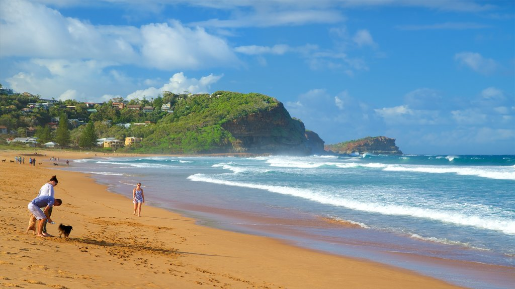 Avoca Beach showing a bay or harbor, surf and a sandy beach