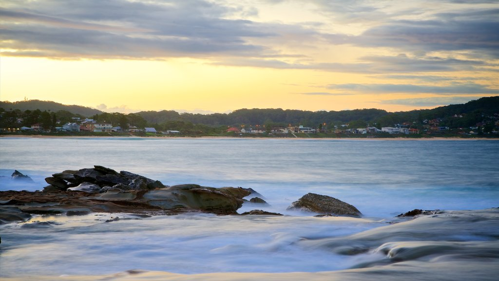 Terrigal showing a bay or harbor, rugged coastline and a coastal town