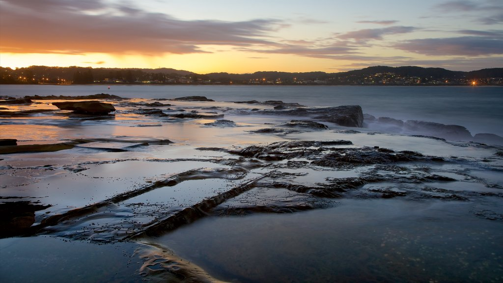 Terrigal which includes a sunset, rocky coastline and a bay or harbor