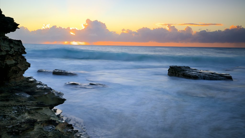 Terrigal which includes a sunset, rocky coastline and surf