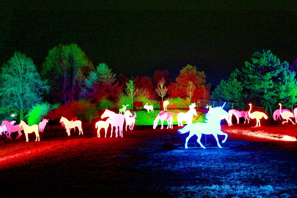 light-night-color-holiday-christmas-lighting-1244323-pxhere.com.jpg?1579696468