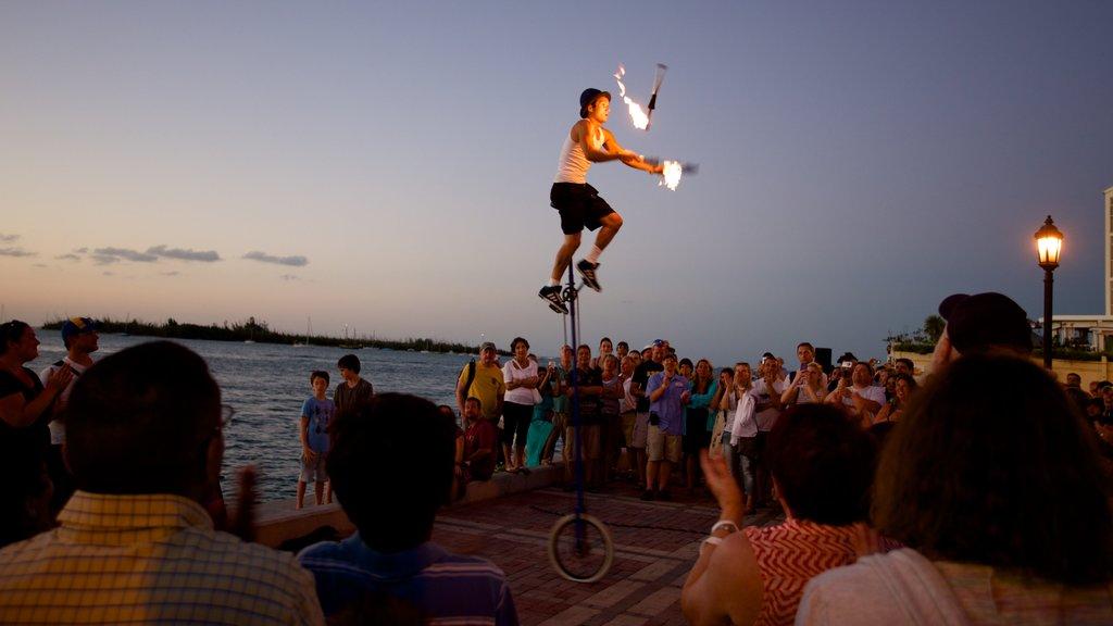 Sul da Flórida mostrando um lago ou charco, arte performática e um pôr do sol