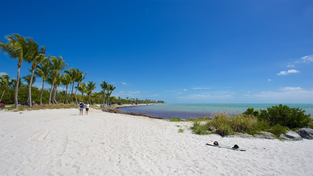 Smathers Beach which includes a bay or harbor and a beach as well as a small group of people