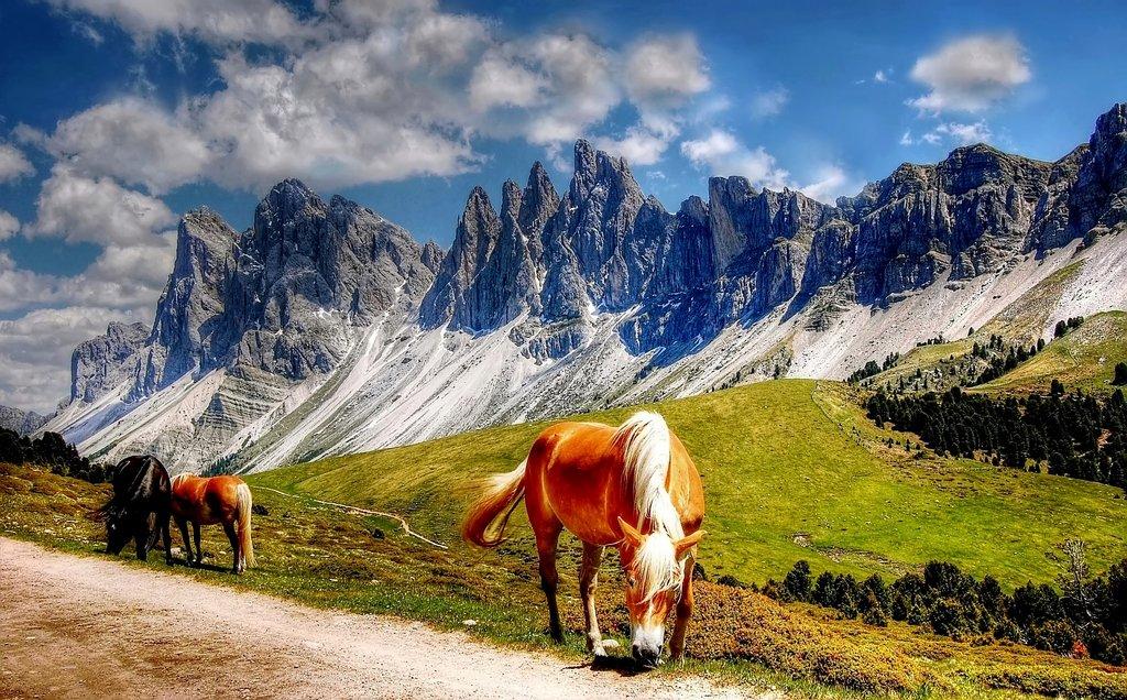 Dolomites_Randonn%C3%A9e_2_CC0.jpg?1545659452