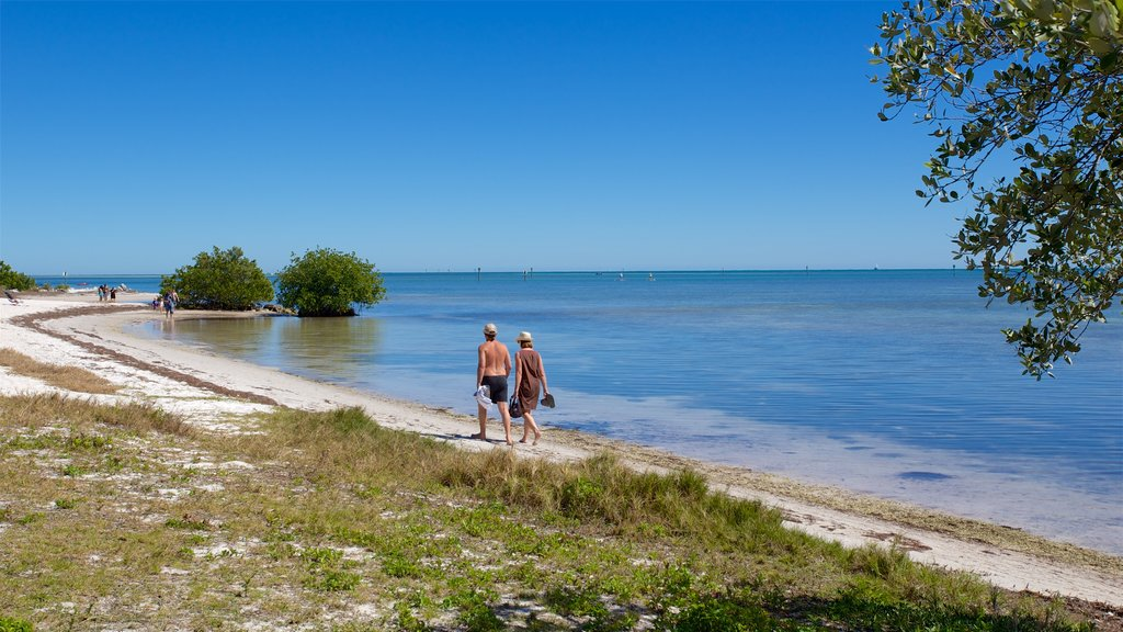 Curry Hammock State Park showing a bay or harbor and a sandy beach as well as a couple
