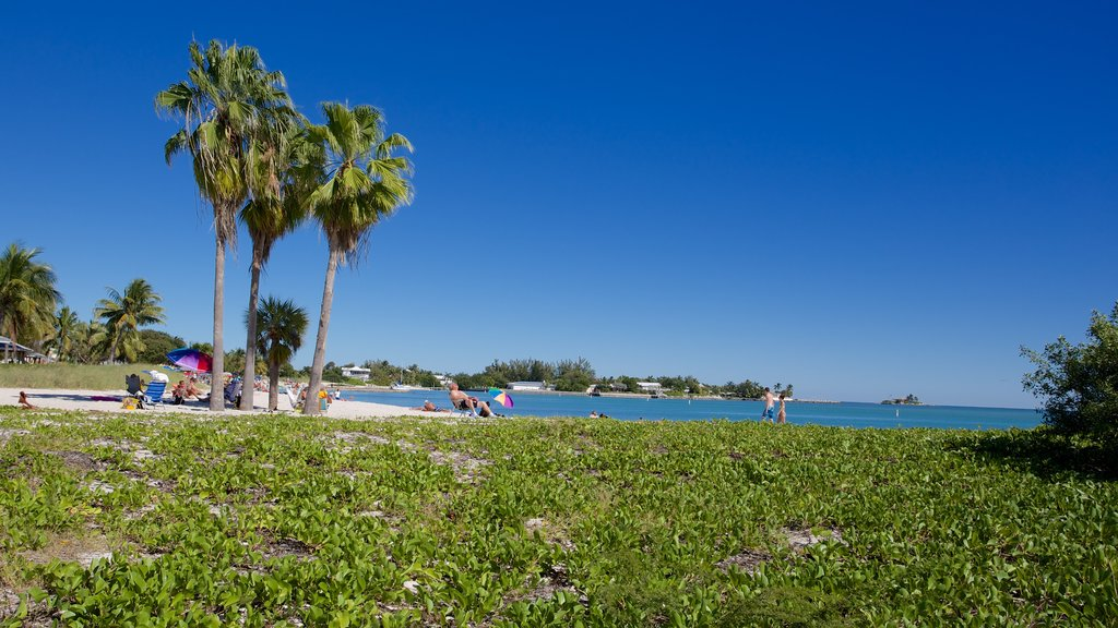 Sombrero Beach showing a beach and a bay or harbor as well as a small group of people