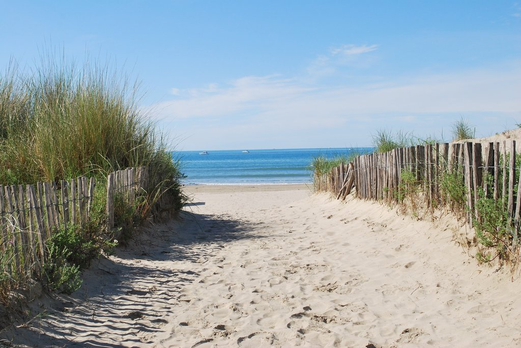 beach-1230728_1920.jpg?1579167590