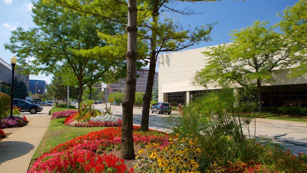 Rosemont que incluye un jardín y escenas urbanas