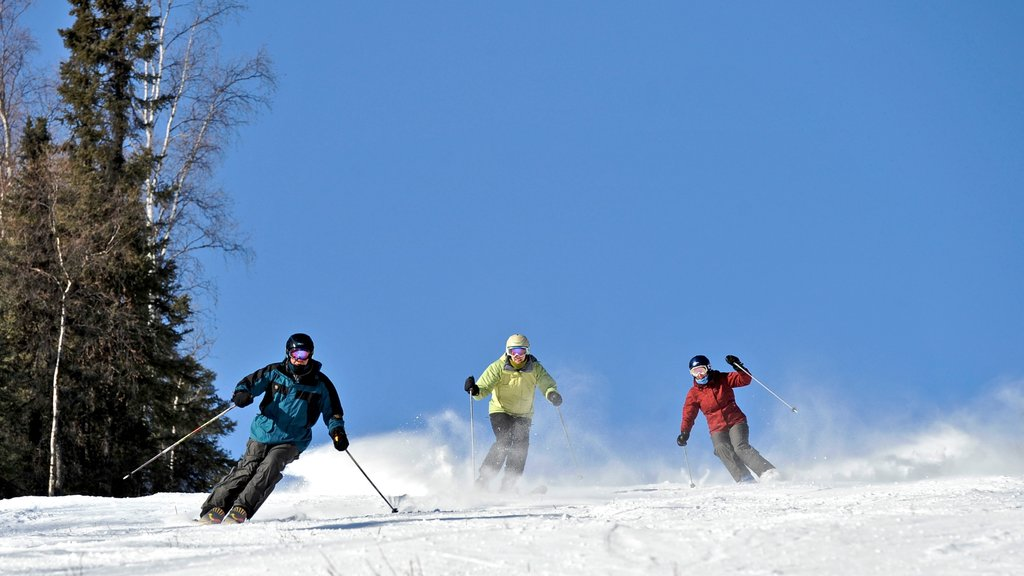 Far North Alaska showing snow and snow skiing as well as a small group of people