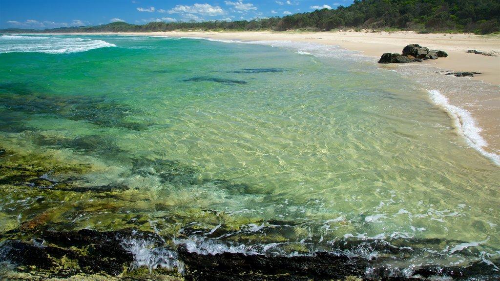 Tallow Beach which includes a sandy beach
