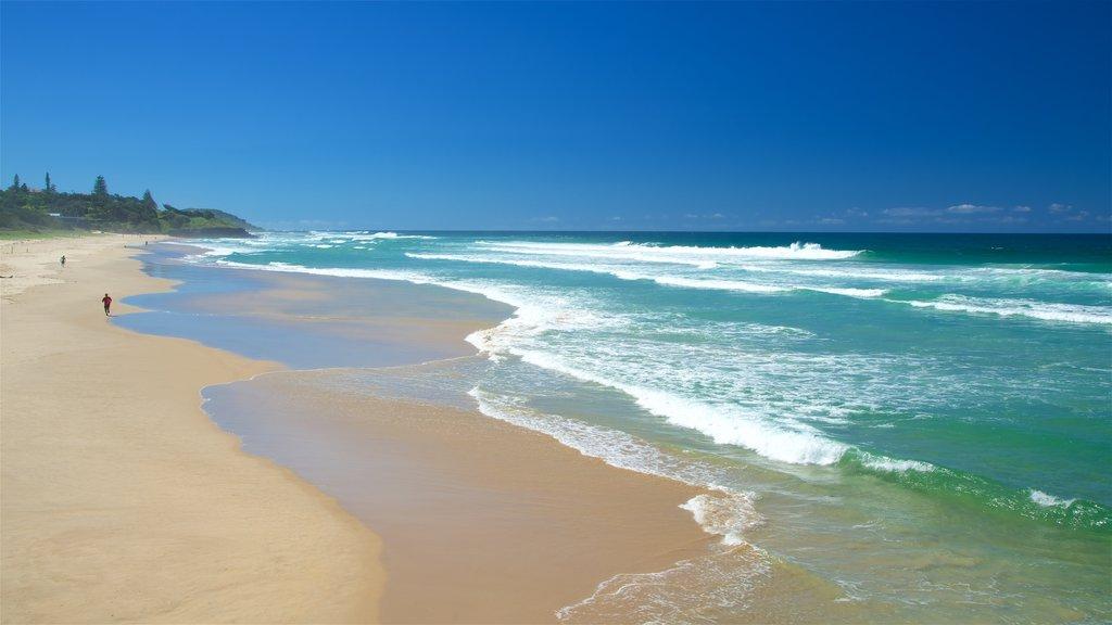 Ballina showing a sandy beach