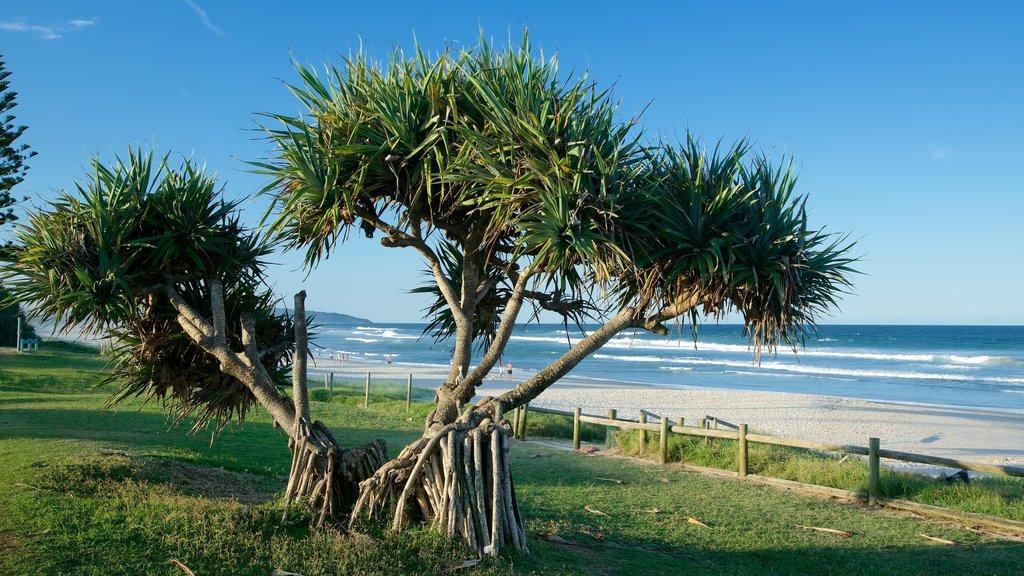 Lennox Head featuring a beach