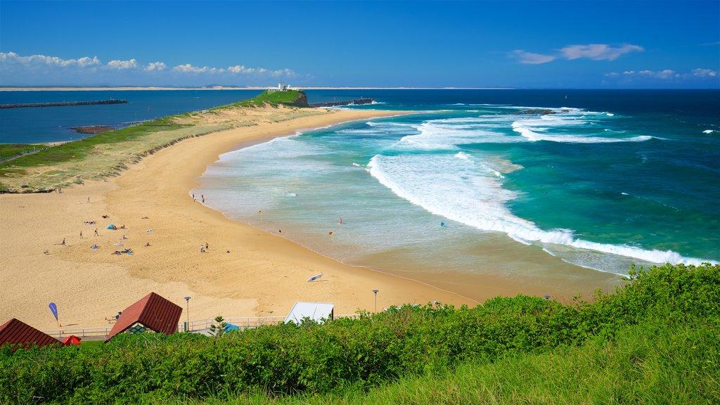 Nobbys Head Beach showing a sandy beach