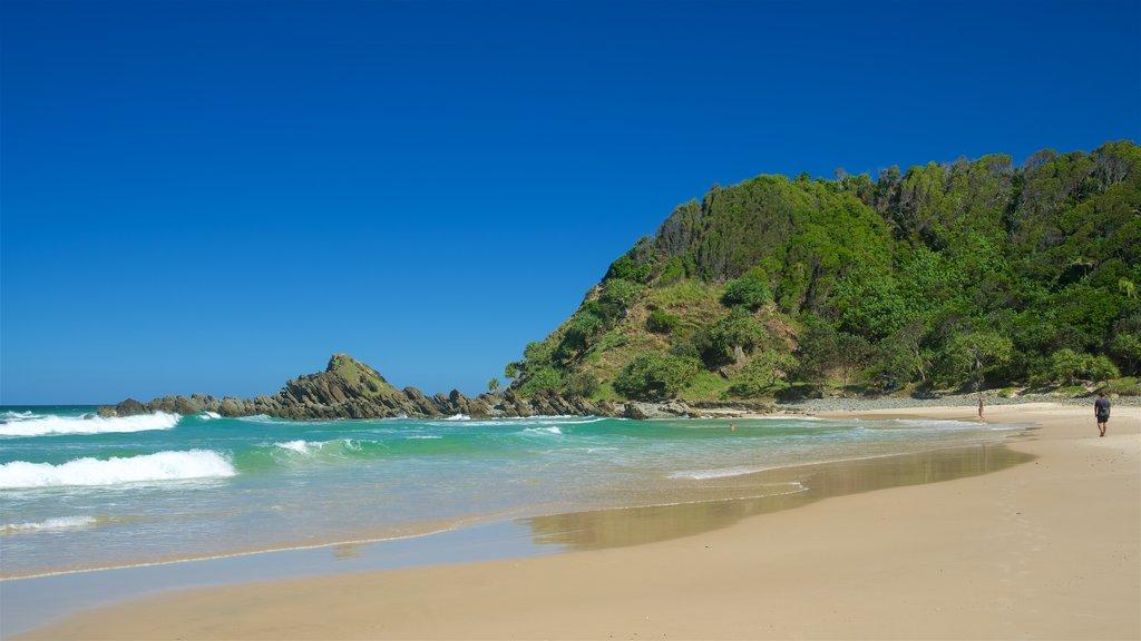 Kings Beach which includes a beach