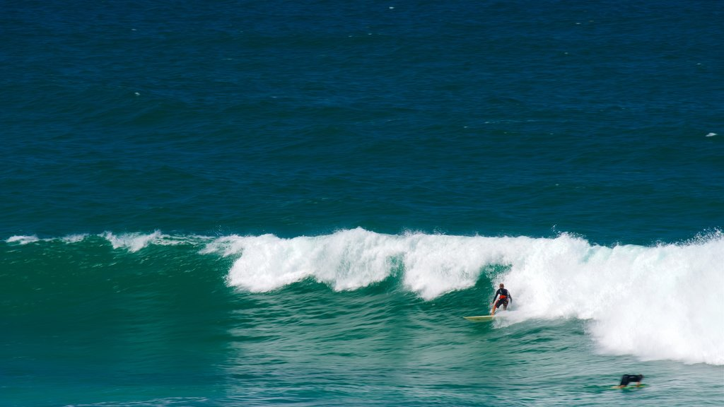 Merewether which includes surfing, surf and general coastal views