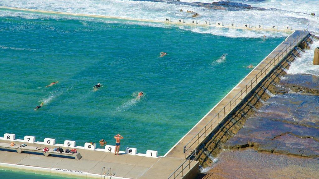 Newcastle ofreciendo natación, vistas generales de la costa y una alberca
