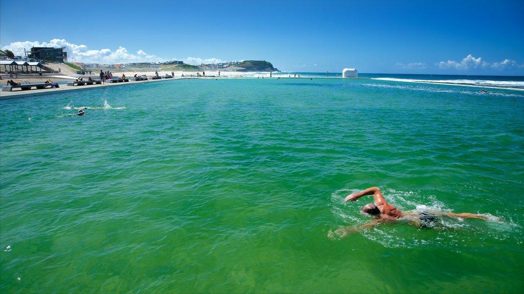 Newcastle ofreciendo vistas generales de la costa, natación y una alberca
