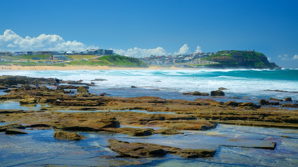 Merewether featuring rugged coastline and general coastal views