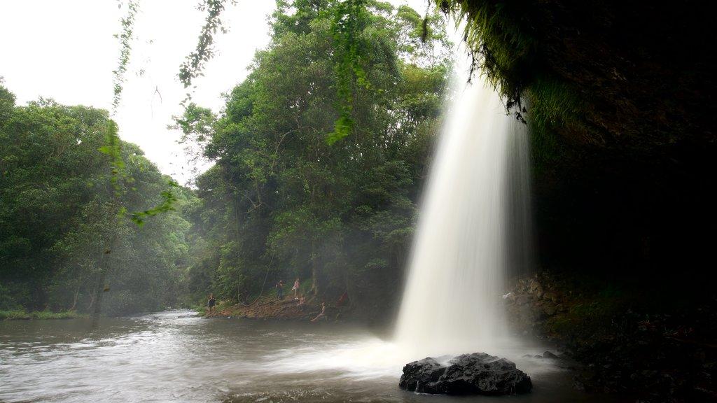 Byron Bay showing a cascade