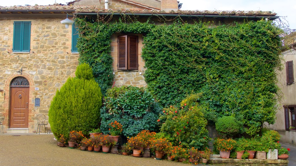 Montalcino which includes a house