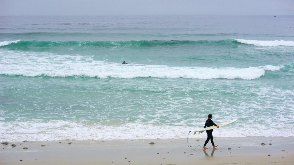 17-Mile Drive showing surfing and surf